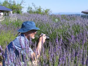 Vince in Lavender Field